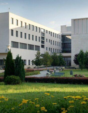 Niyrejhazi Universiteti