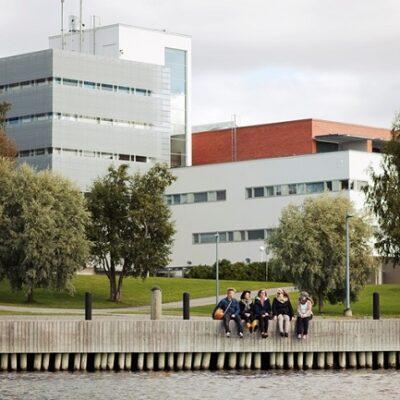 Vaasa Universiteti