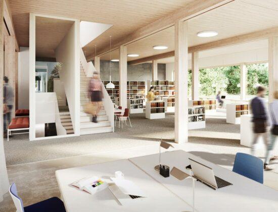 Witten/Herdecke Universiteti