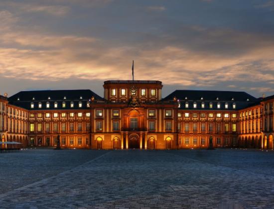 Mannheim Universiteti