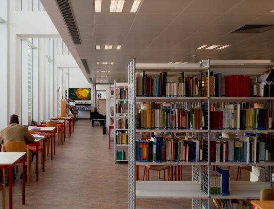 Algarve Universiteti