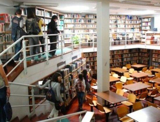 Fernando Pessoa Universiteti