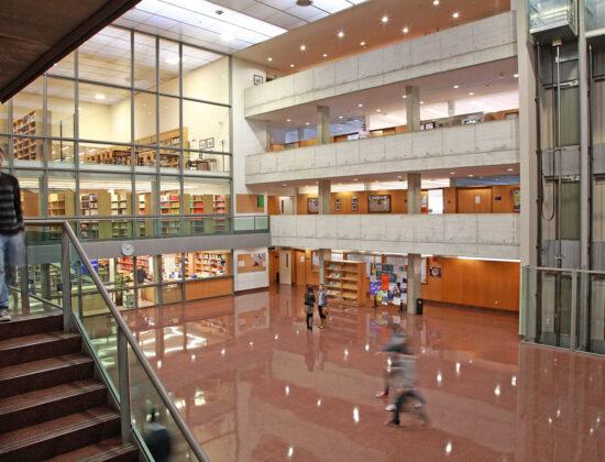 Coruna Universiteti