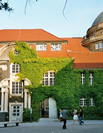 Hamburg Universiteti