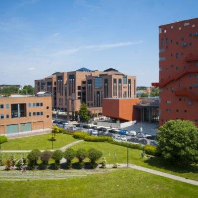 Milan IULM Universiteti