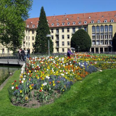 Freiburg Universiteti