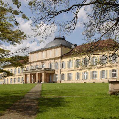 Hohenheim Universiteti